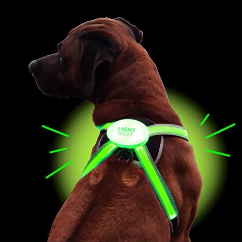 Arnés LED para Perros Recargable por USB con 4 Colores | Chaleco LED para Perros Luminoso +...