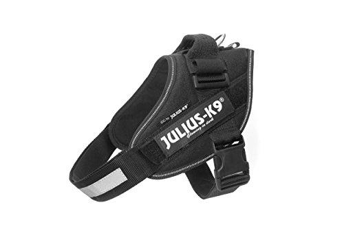 JULIUS-K9 16IDC Arnés de Potencia para Perros, color Negro, Tamaño