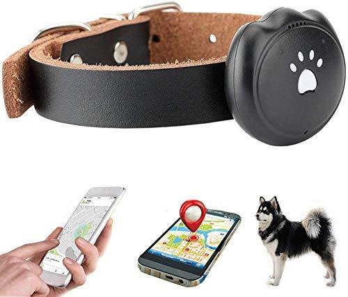 WanZhuanK Mini GPS localizador del Gato del Perro rastreador, IP67 a Prueba de Agua en Tiempo Real...