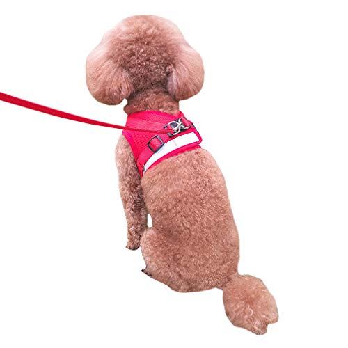 QiCheng&LYS Chaleco de Viaje Regular de Malla Transpirable con Cinturón de Seguridad para Perros y...