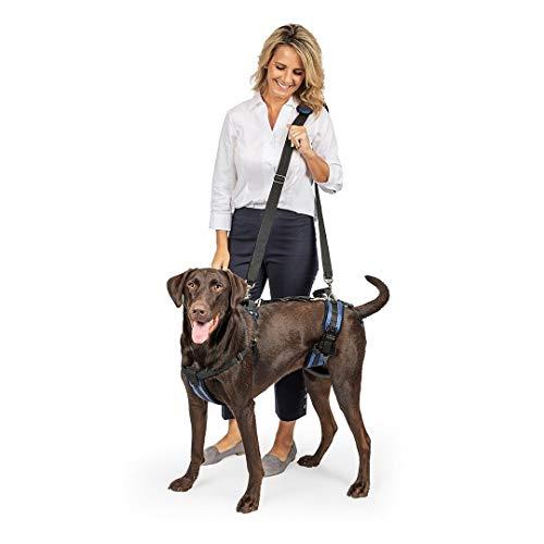 PetSafe Carelift - Arnés de Soporte - Soporte de Cuerpo Completo con Asa - Ideal para Perros...