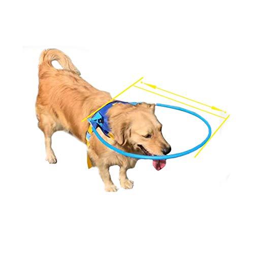 Arnés de halo, seguro para mascotas, para perros ciegos, anillo protector de plástico para perros...20