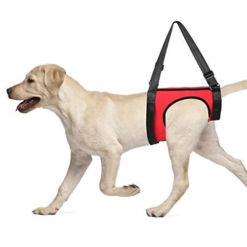 YOUTHINK Arnés de Soporte para Perros Ayuda para Caminar para Mascotas Chaleco de elevación para...