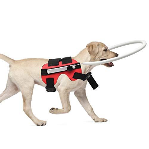 SunshineFace Chaleco Protector para Perros Ciegos Anticolisión con Anillo Seguro Perro Guía Arnés...