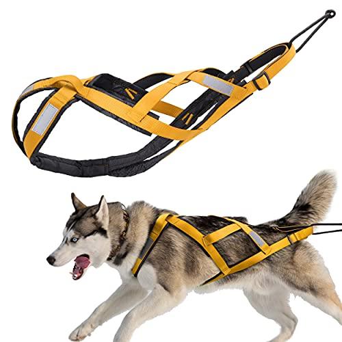 PET ARTIST Arnés ajustable para perro – Arnés reflectante para perros grandes – X Back Slled...
