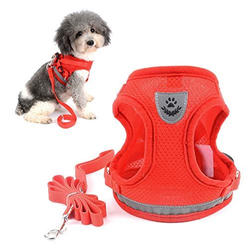 Ranphy Arnés reflectante para perro pequeño malla transpirable chaleco para mascotas sin arnés de...