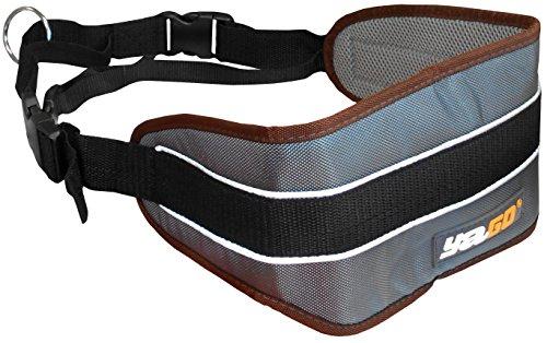 Yago Deporte cinturón para Perro
