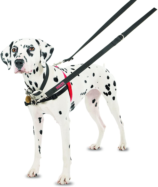 Halti Arnés de adiestramiento de perros