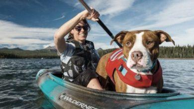 Chalecos salvavidas canoa
