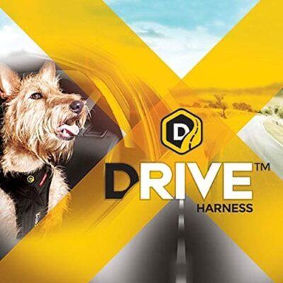 EzyDog Drive Mejor arnes de coches para perros