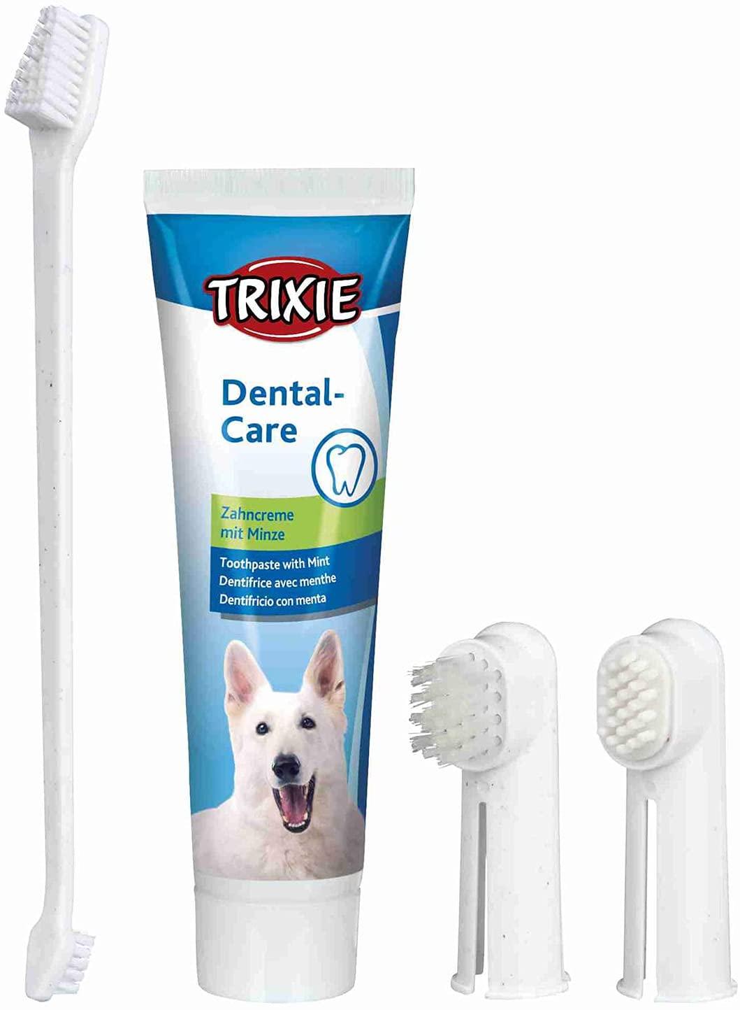 Pasta de dientes para perro
