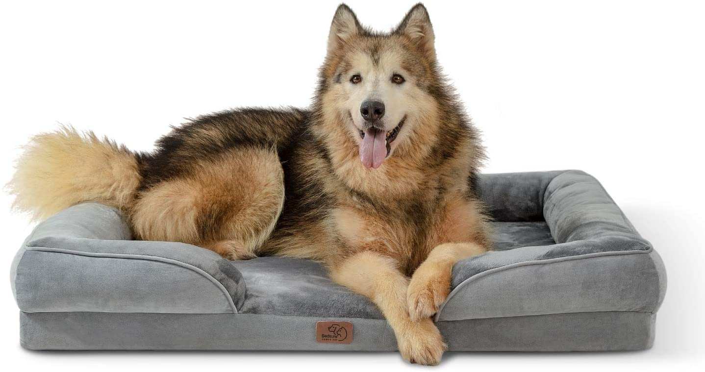 cama perros