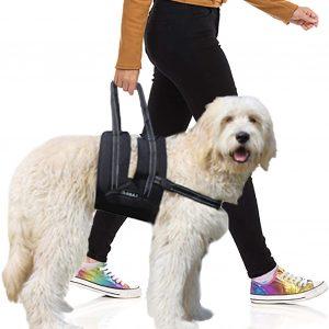 Arnés perro displasia