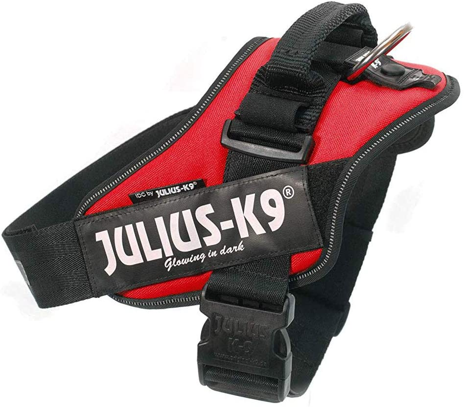 Julius k9 Rojo