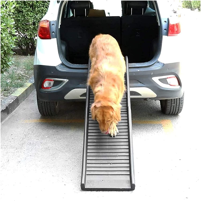 rampa perro