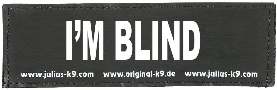 yo soy ciego